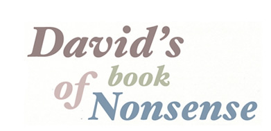 david's book of nonsense