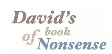david's book of nonsense